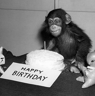 """""""Happy Birthday!"""" exclaims Uncle Fumerous, The Animal Show's kindly and wizened benefactor."""
